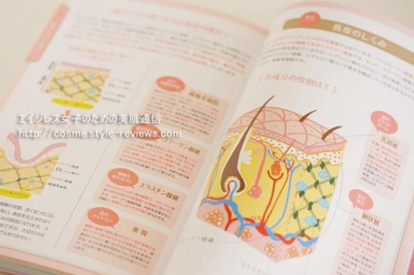 公式対策テキスト「コスメの教科書」皮膚の構造